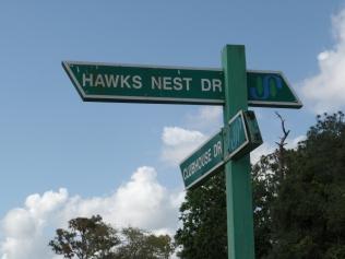 Hawks Nest Spruce Creek